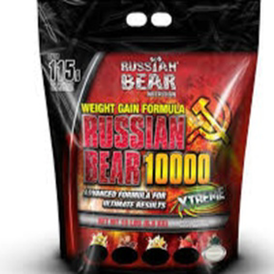 Picture of RUSSIAN BEAR 10000