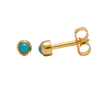صورة Studex® Select™ 24ct Gold Plated Pearl Turquoise Bezel Regular: PR-R305Y-STX