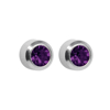 صورة Studex® Select™ Stainless Steel Crystals Bezel February Amethyst Regular: PR-R202W-STX